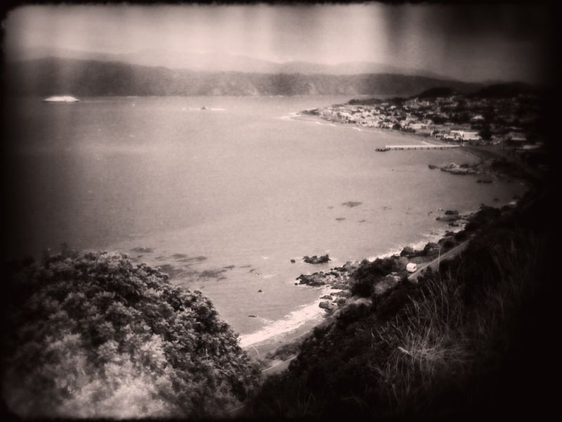 Seatoun from the heights today, with Plastic Bullet for iPhone.