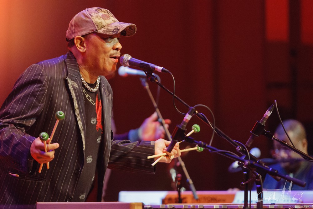 Roy Ayers at the Wellington Jazz Festival, 2009.