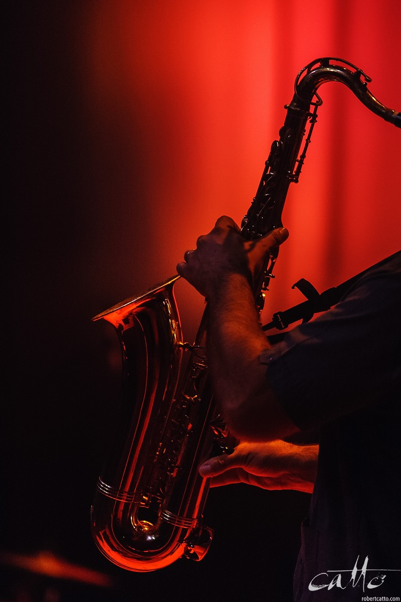 Wellington Jazz Festival, 2009 (click the image to embiggen)