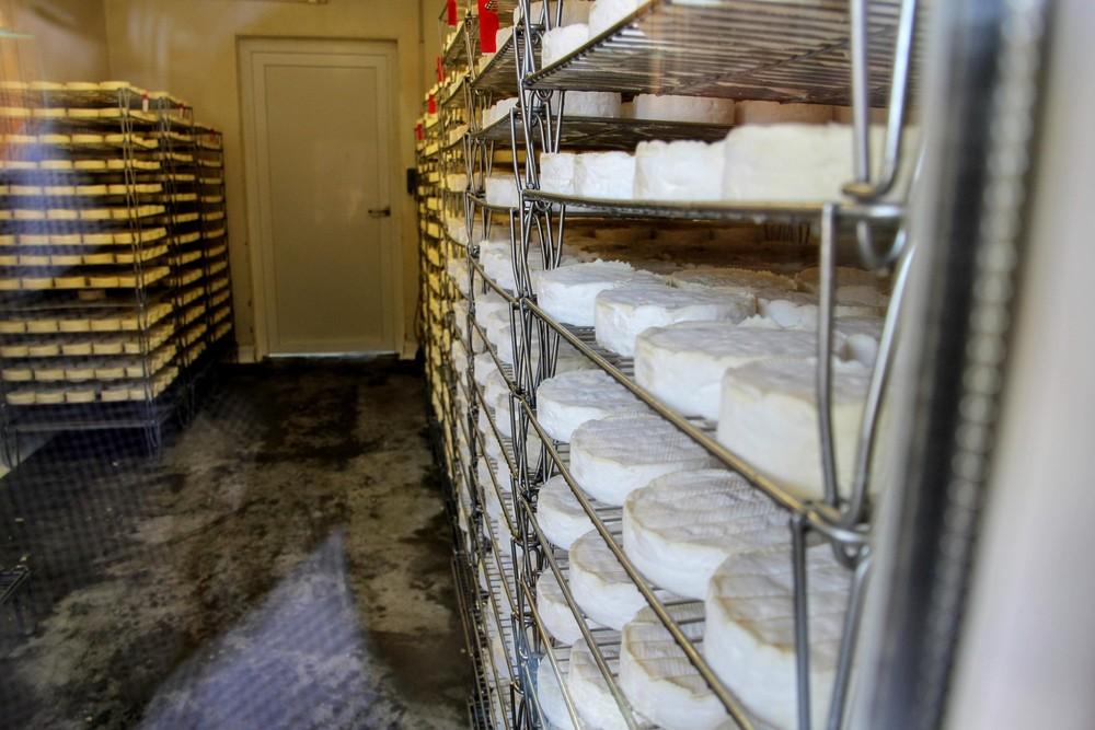 rack-of-camembert-fromagerie-durand.jpg