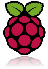 Raspberry Pi Sinefa Probe