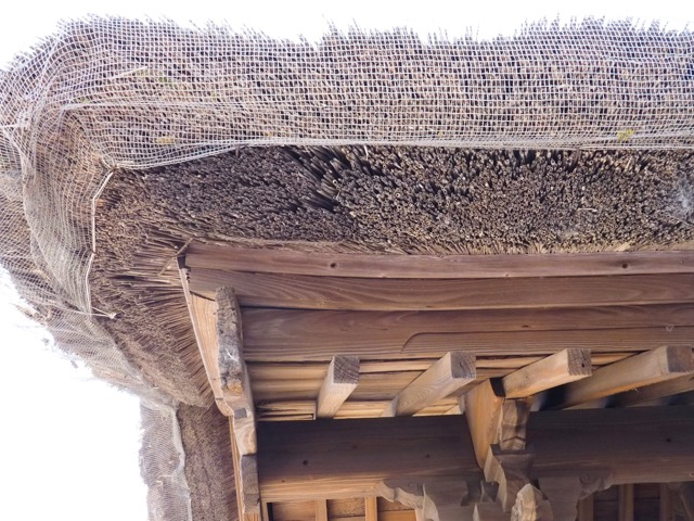 Reed and wood roof (try saying that five times fast!) of a temple