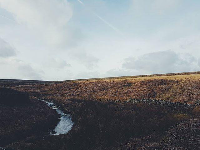 Woodland meets moorland #landscape #wanderlust #nature #landscapephotography #filsonlife #england #naturelover #dogsofinstagram #britain  #agoodwalk #gonefishing #wilderness #android #samsung #whippet #yorkshire #harrogate