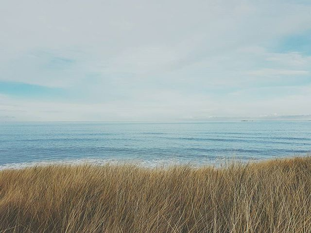 The North Sea at Bamburgh Beach looking unusually blue #landscape #wanderlust #nature #landscapephotography #filsonlife #england #beach #coast #naturelover #tweed #fashion #blueskies  #stetson #beach #wilderness #edinburgh #dogsofinstagram #britain #hibernot #agoodwalk #gonefishing #coast #android #samsung #whippet #northumberland #bamburgh #whippetsofinstagram