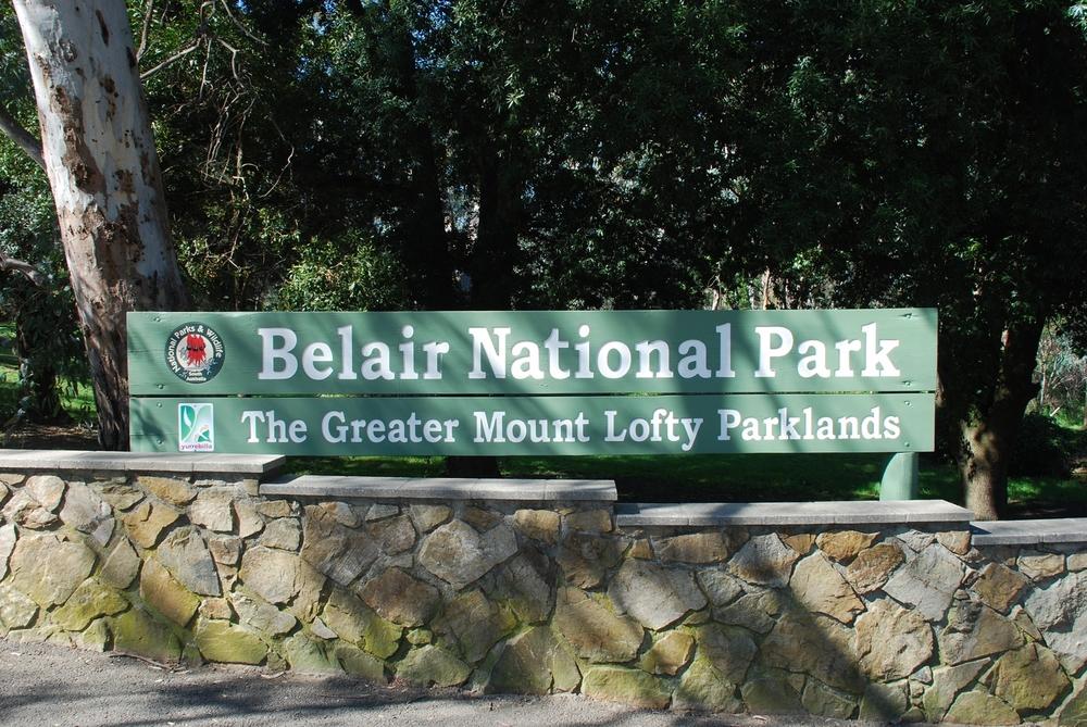 Belair National Park.jpg