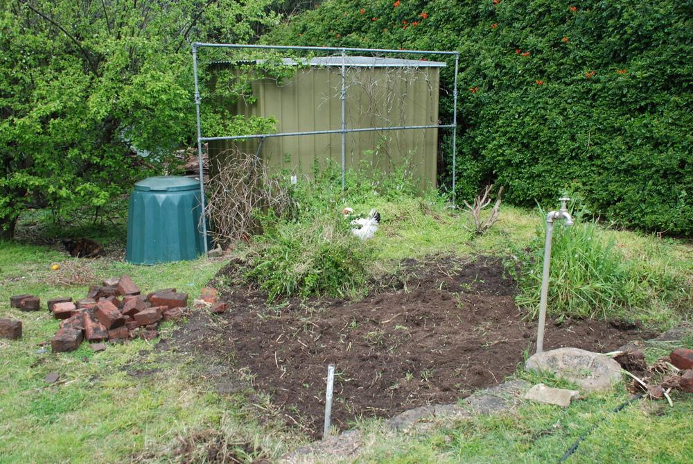 Preparing for Planting.jpg