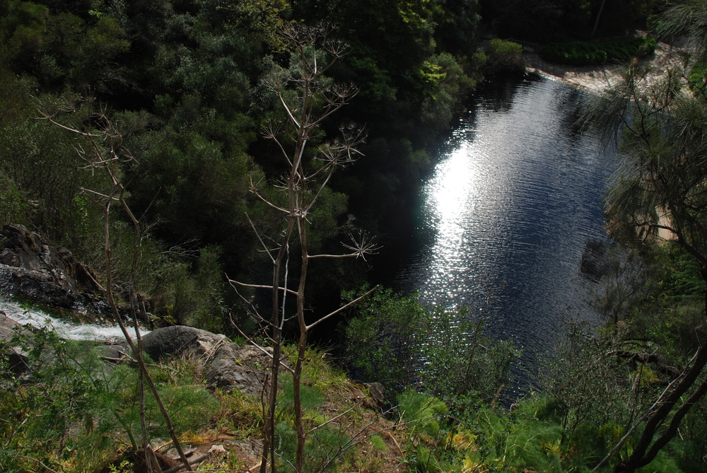 Waterfall Gully Waters.jpg