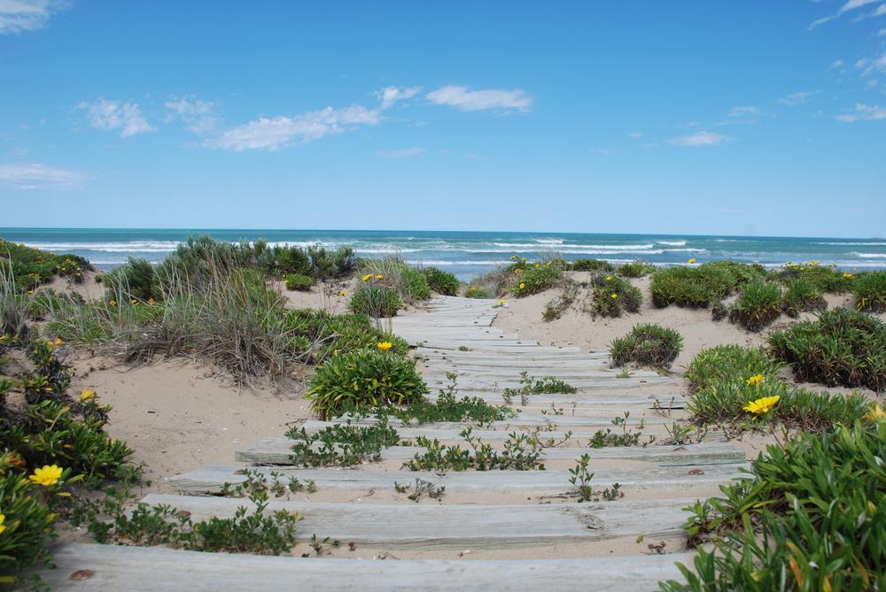 Middleton Beach Path.jpg