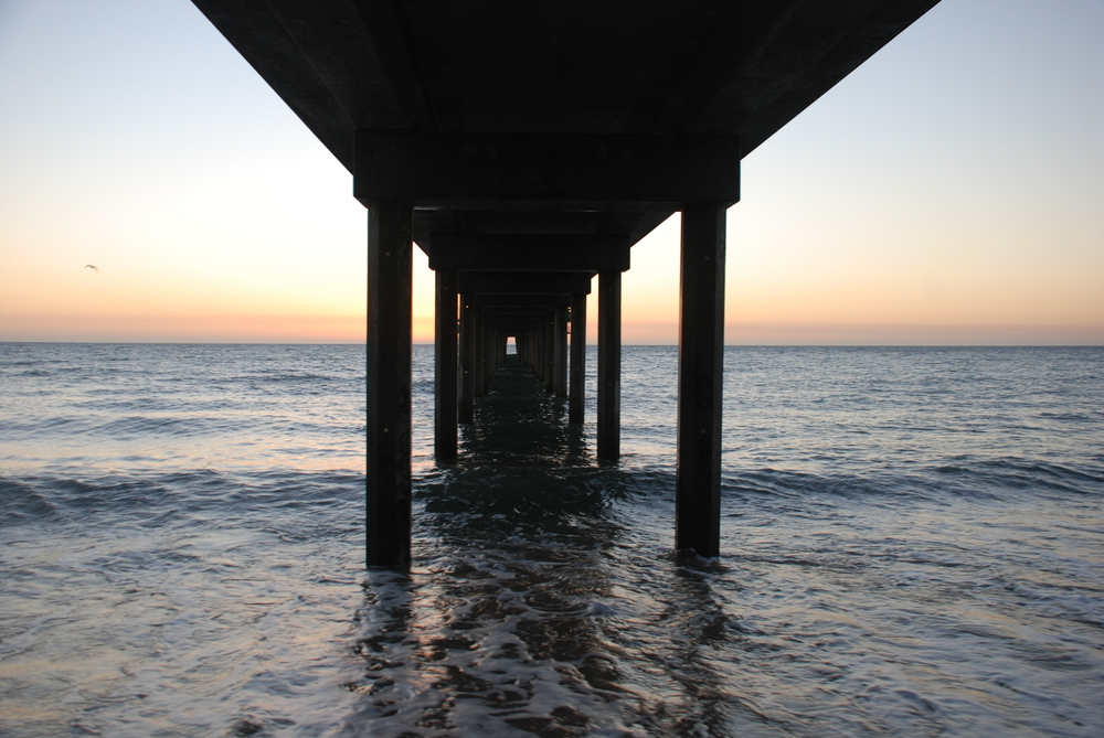 Underneath Brighton Jetty