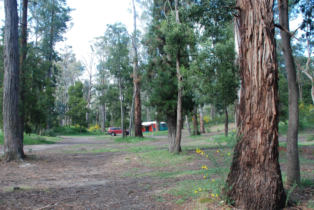 Unpowered Camping.jpg