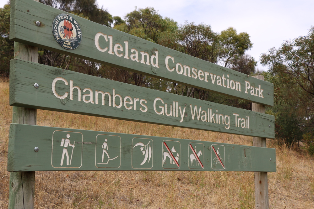 Chambers Gully.jpg