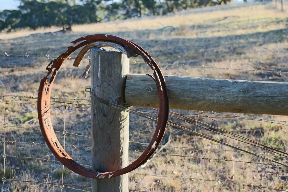 Rusty Wheel Rim