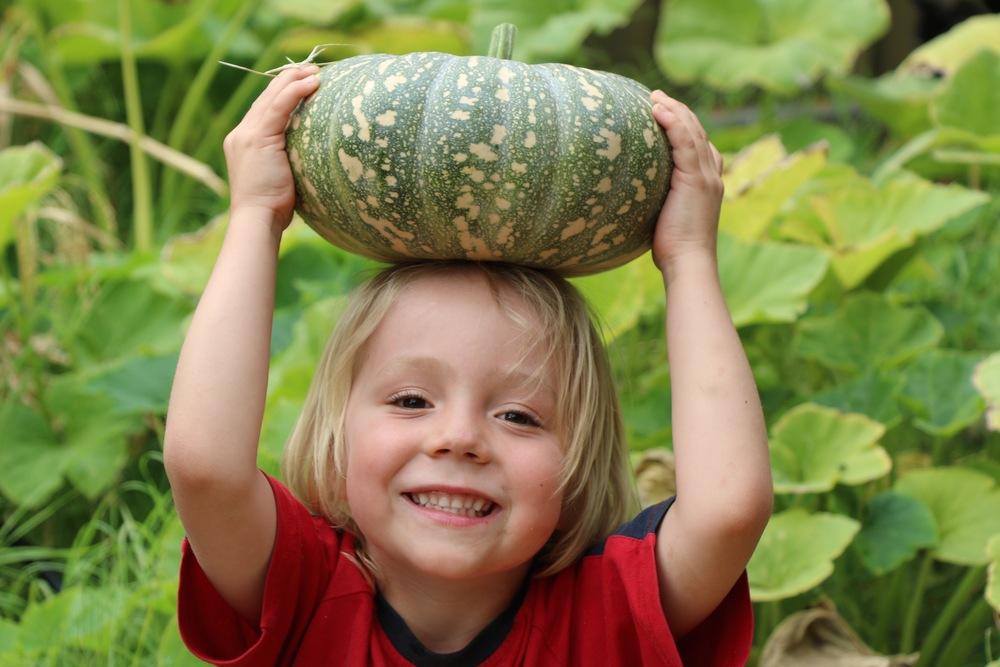 Noah With Pumpkin.jpg