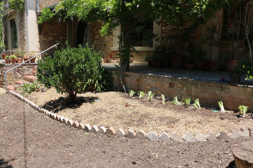 Ornamentals Garden.jpg