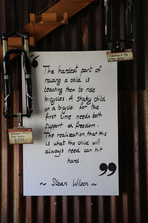 Sloan Wilson Quote.jpg