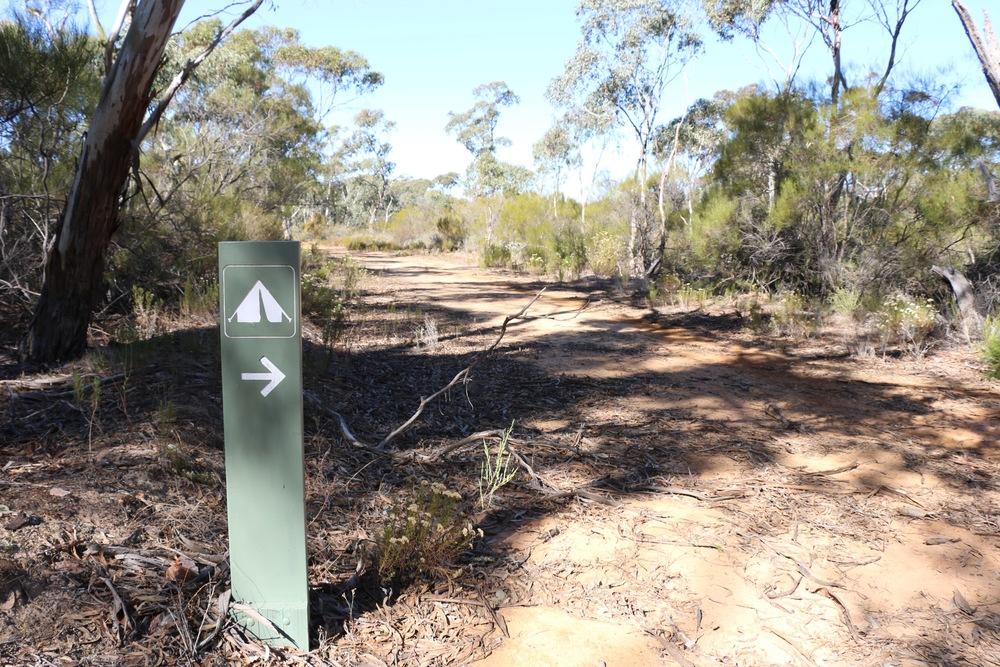 Bush Camp.jpg