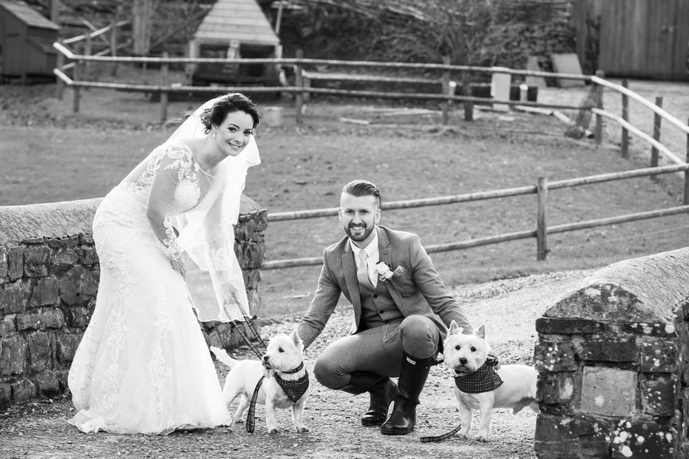 Millbrook Estate bride and groom with dogs