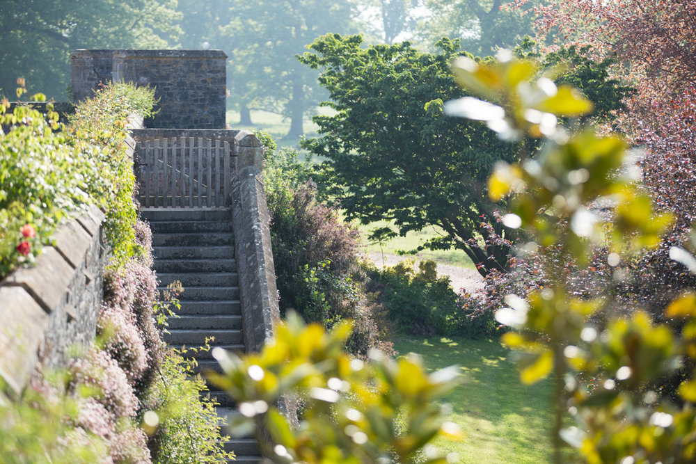 steps at powderham castle