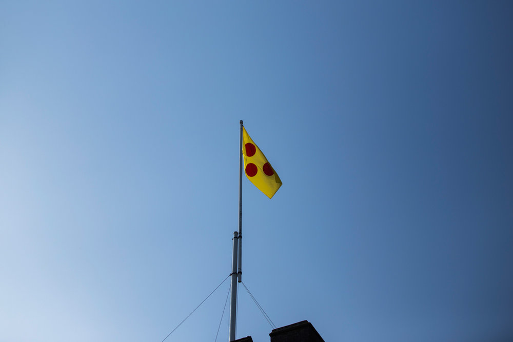 powderham castle flag