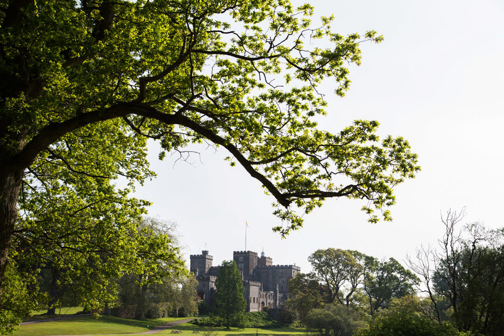 powderham castle grounds  - rebecca vale photography