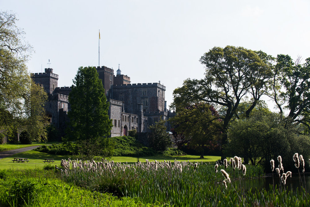 powderham castle wedding venue