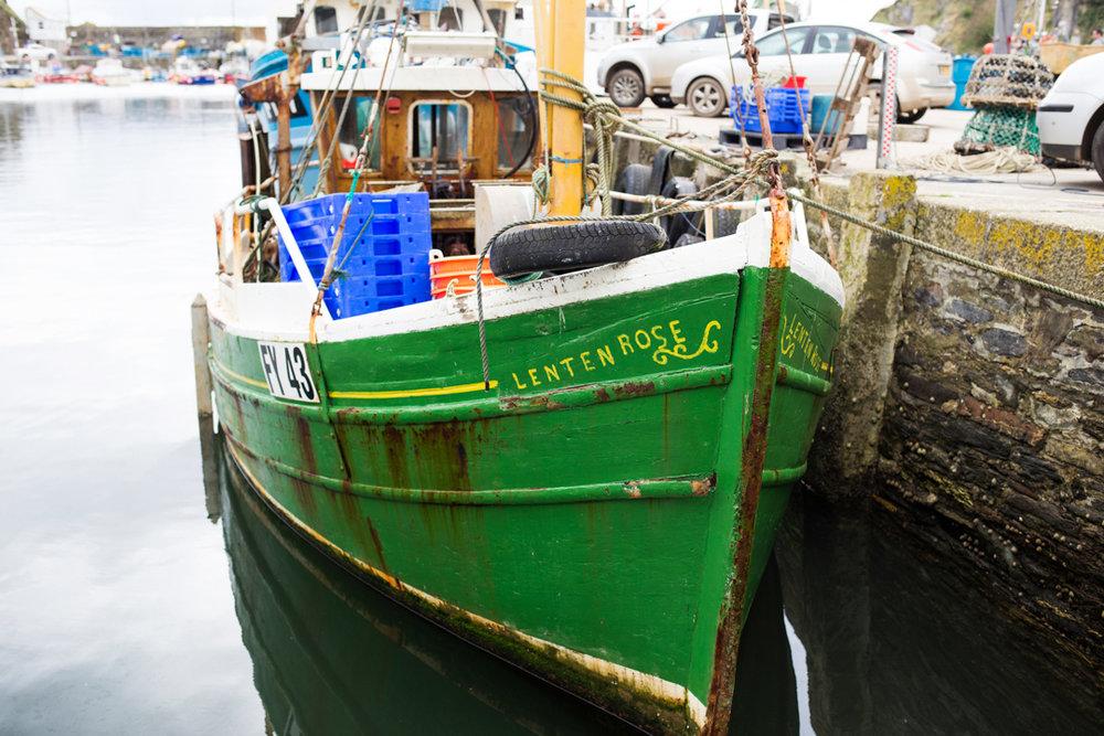Lenten Rose boat Mevagissey