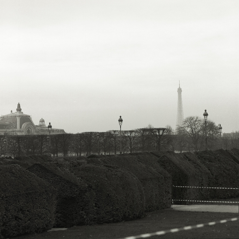 View of the Eiffel Tower from the gardens at the Louvre.