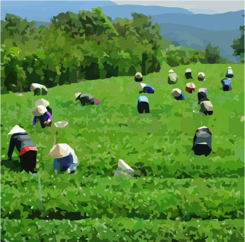 Illustration Workers Vietnam.jpg