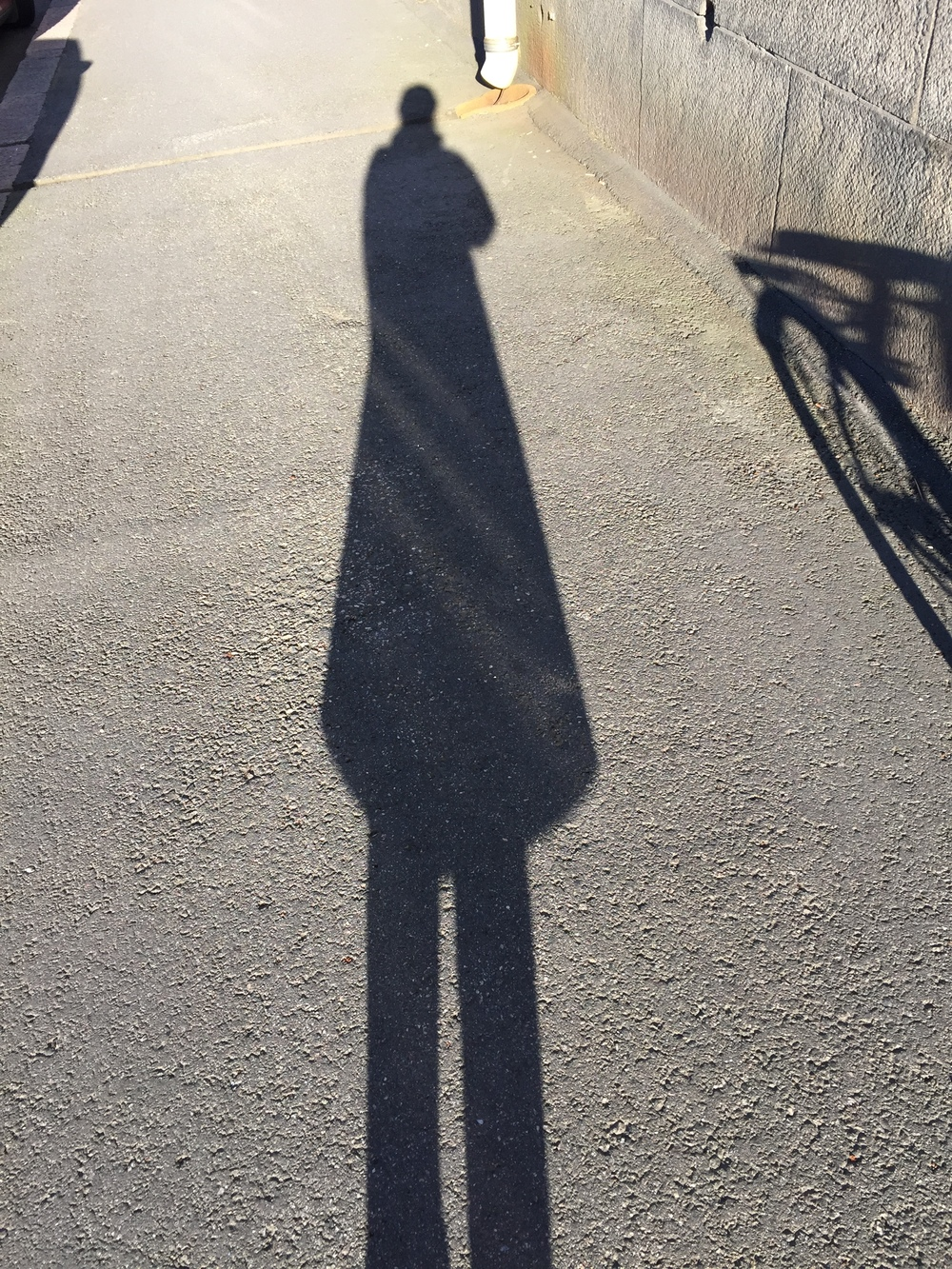 4pm shadow
