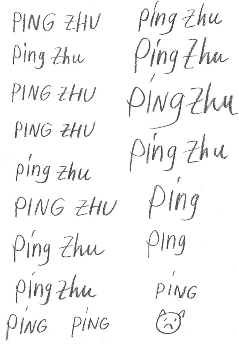 Ping.jpg