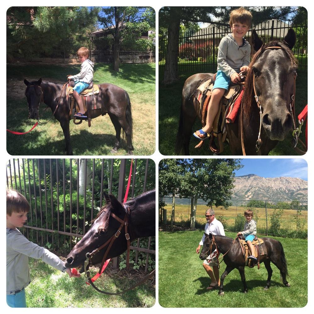 Lucky Nicholas got to ride a Pony! 8.1.15
