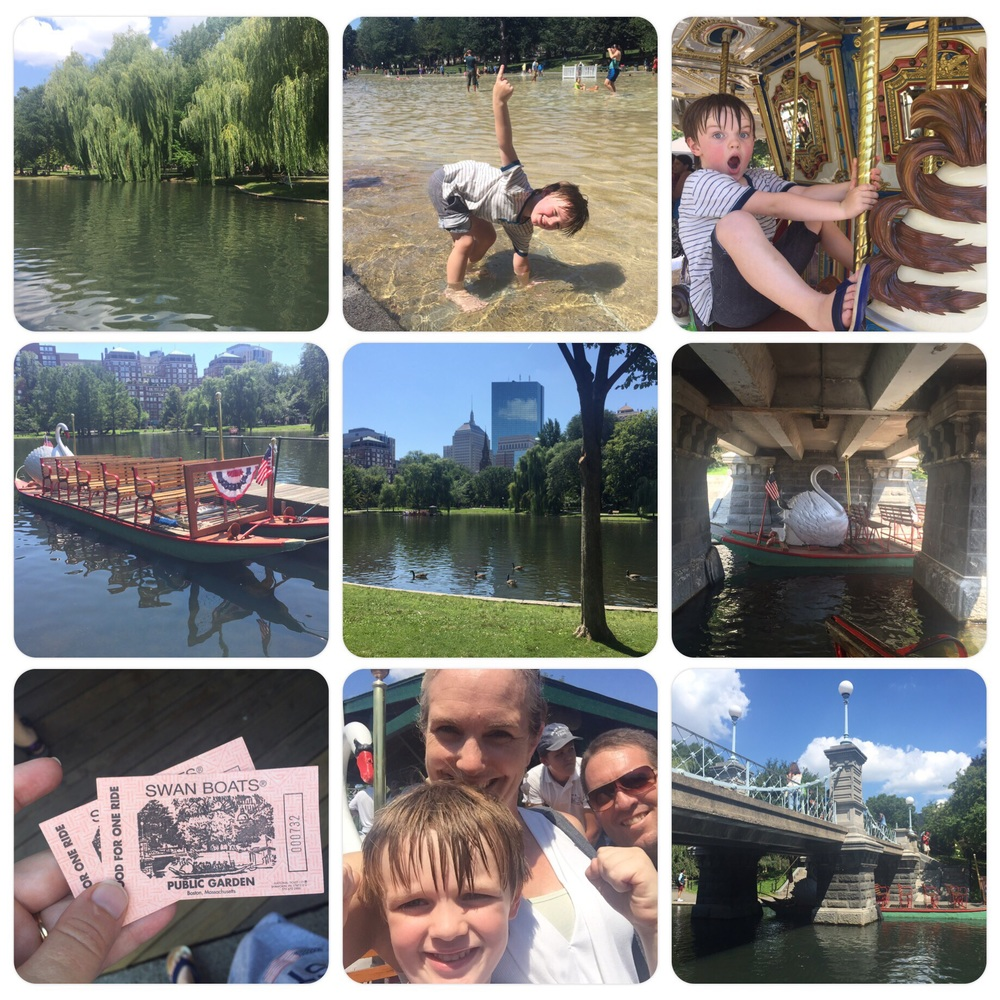 Swan Boat ride - August 2015