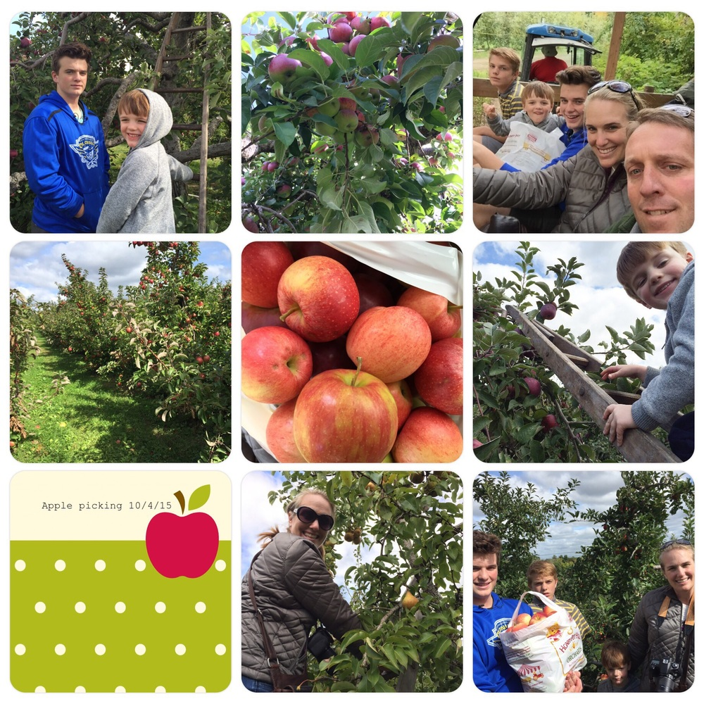 Apple Picking at Honey Pot Hill.