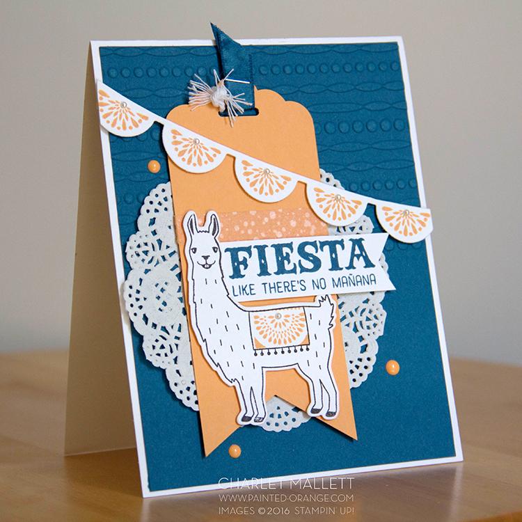 Birthday Fiesta 5b.jpg