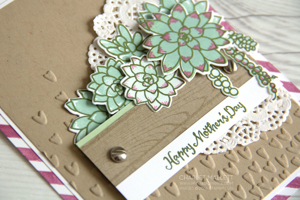 Detail view - Mother's Day Card using Oh, So Succulent stamp set and framelits from the Stampin' Up! 2017 Occasions mini catalog - Charlet Mallett