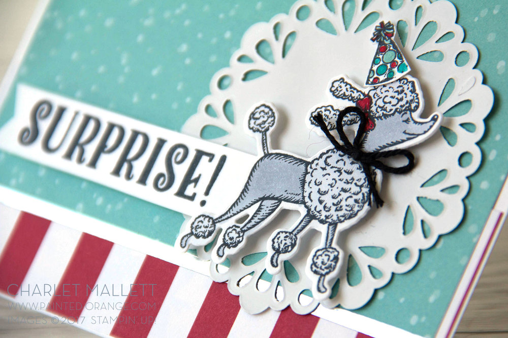 Birthday Delivery Poodle Card - Charlet Mallett Stampin' Up!