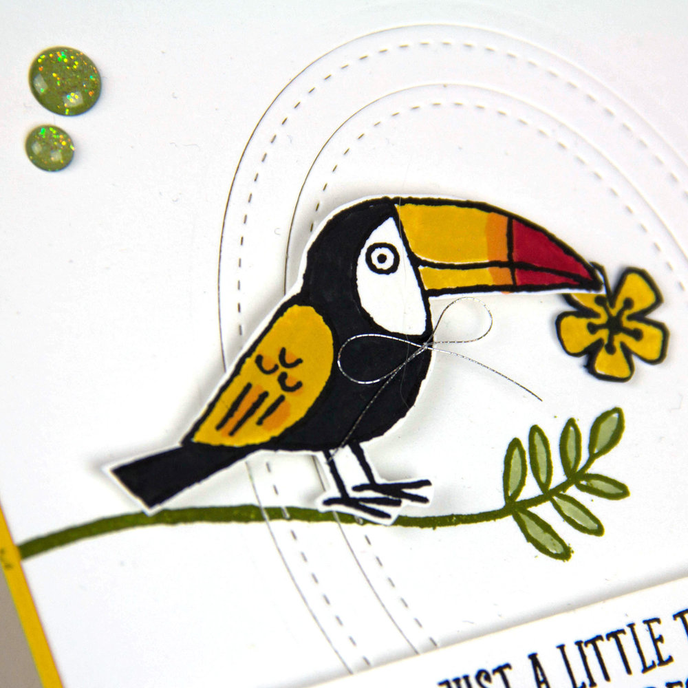 Bird Banter Toucan card- Charlet Mallett - Stampin' Up! Occasions 2018