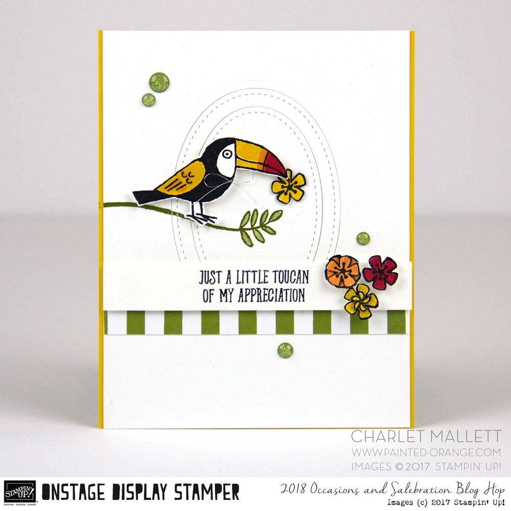 Bird Banter OSDS1.jpg