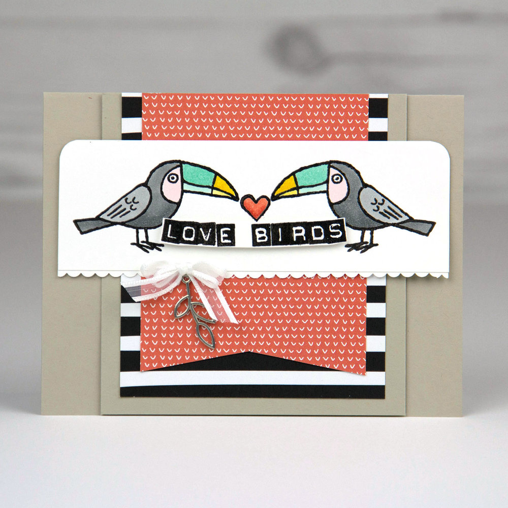 Bird Banter - Instagram tip (2 of 4).jpg