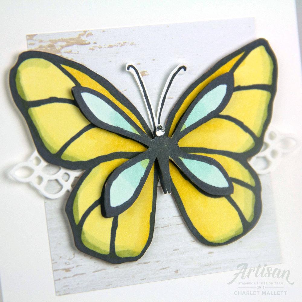 Butterfly (2 of 4).jpg