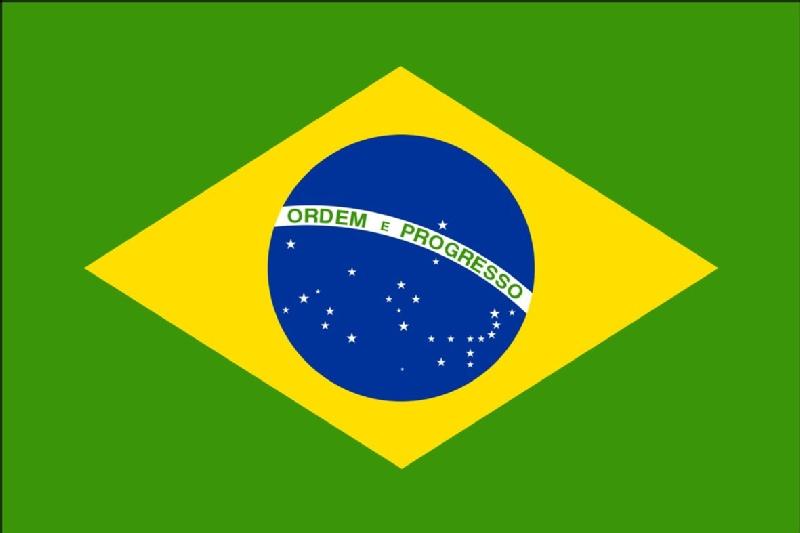 brazil-flag[1].jpg