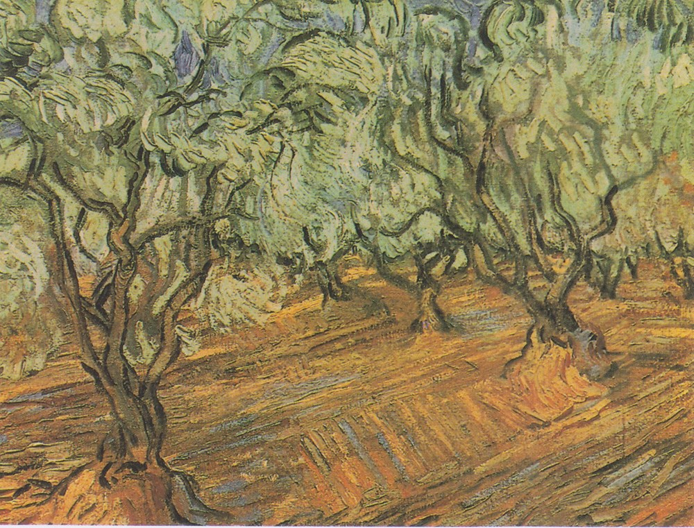 "Olive Trees: Bright Blue Sky by Vincent Van Gogh (1889)   Psalm 52:8 ""But I am like a green olive tree in the house of God. I trust in the steadfast love of God forever and ever."""