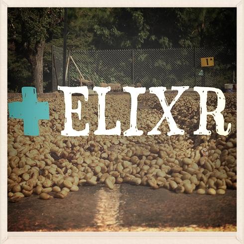 elixr.jpg