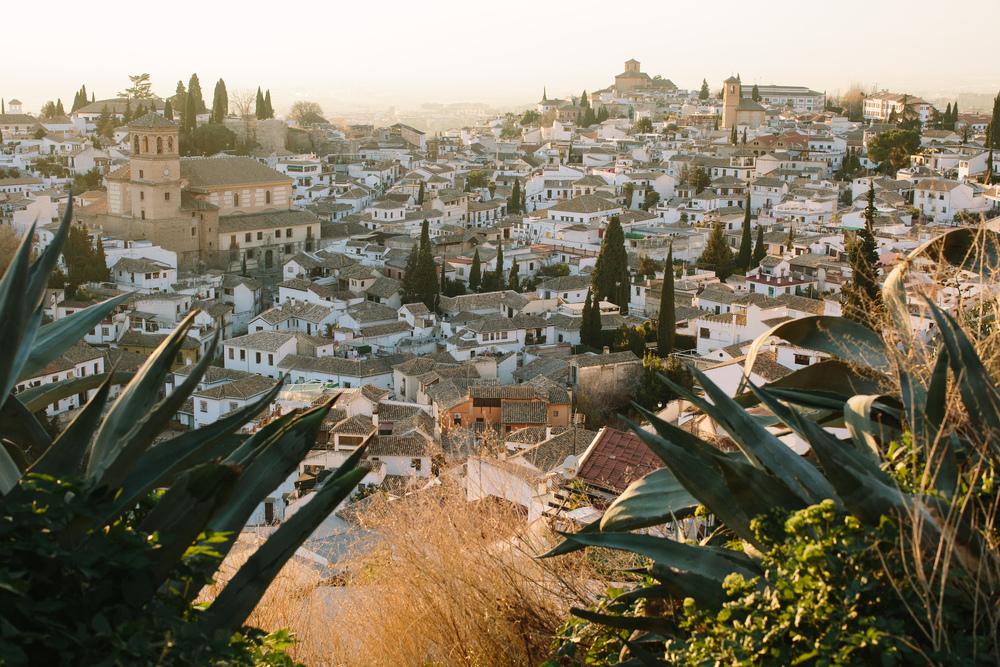 Nicodem Creative_Granada-9.jpg