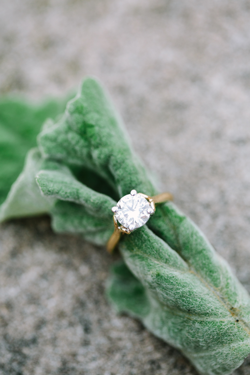 Nicodem Creative_Benware Engagement_Promontory Point Chicago-1.jpg