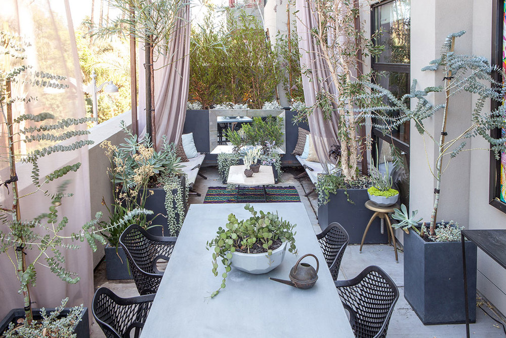 Plantings by We Came In Peace, zinc-topped table by Bobo Intriguing Objects