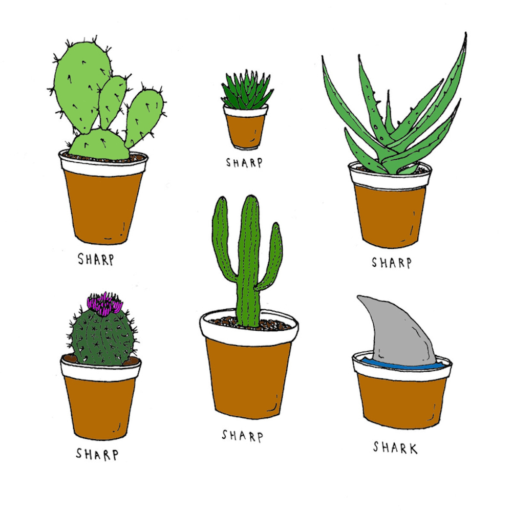 Cacti -- Iris Gottlieb.jpeg