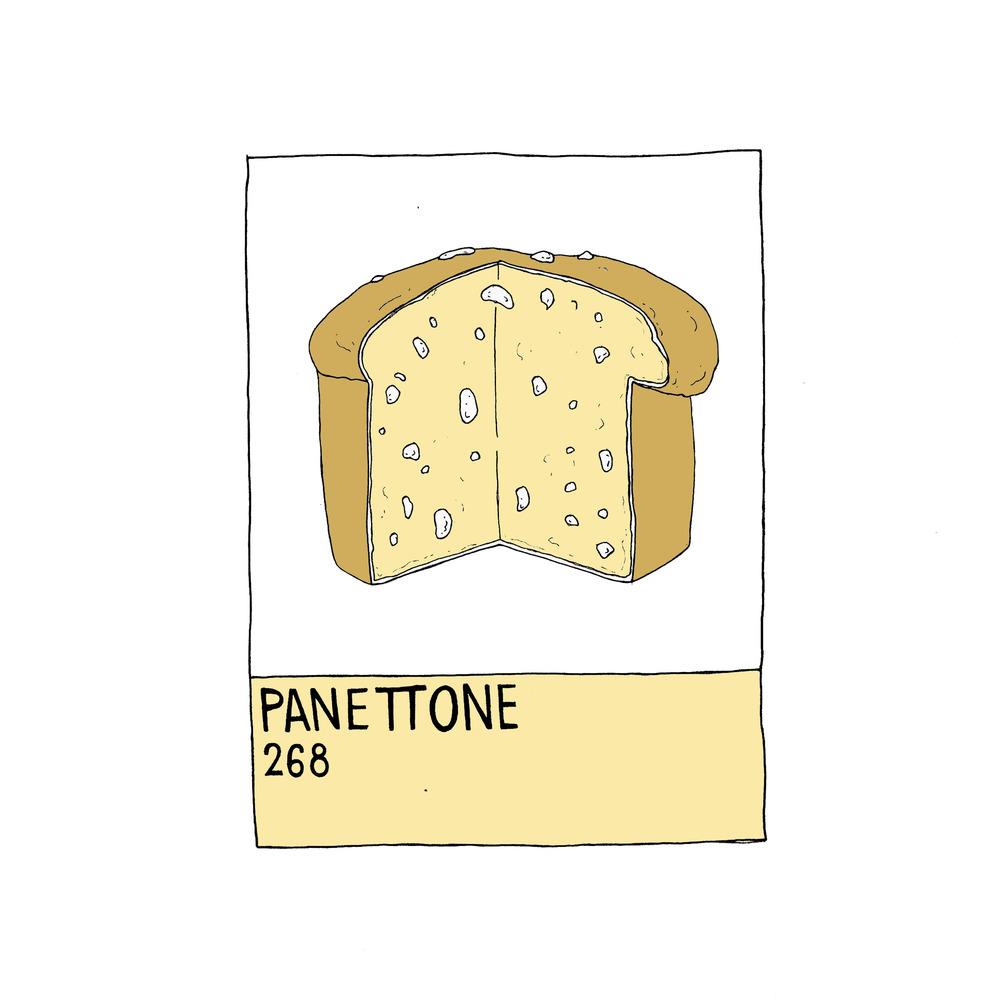 pantone 5.jpg