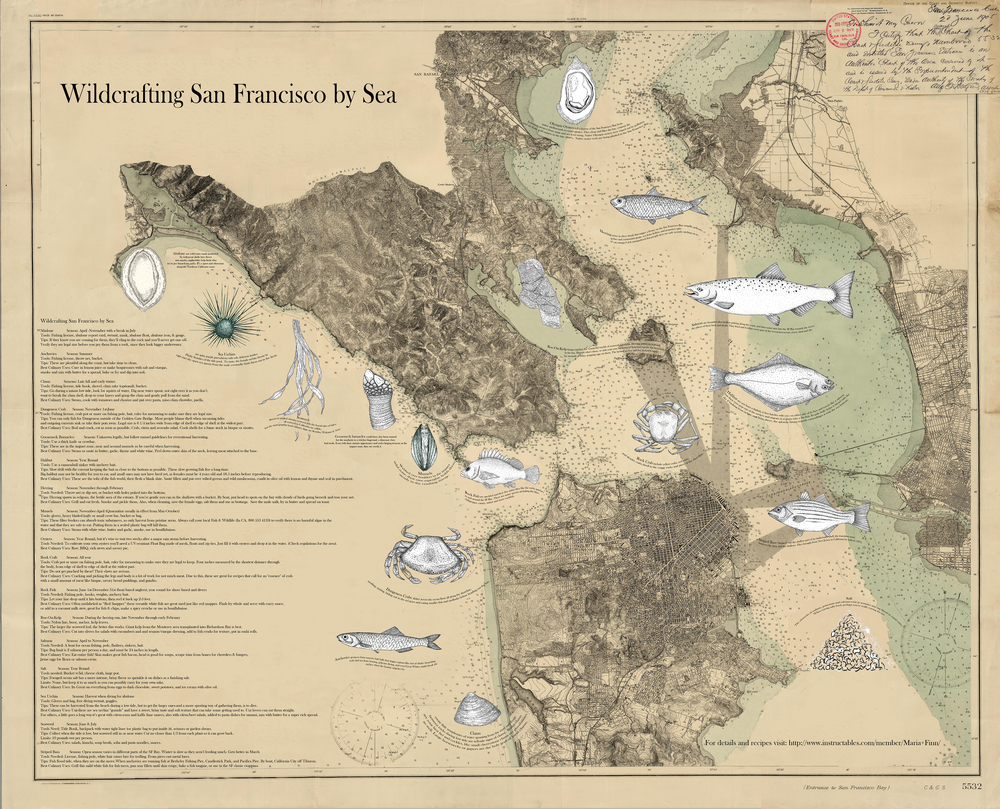 EDIBLE MAP OF SF BAY