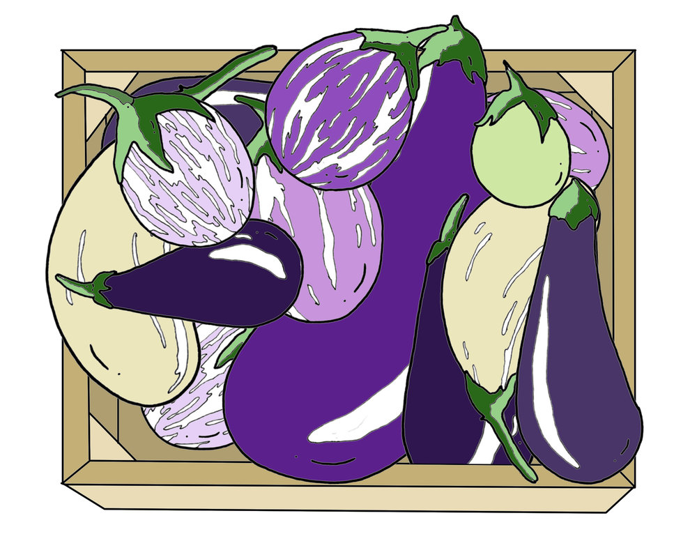 Eggplants in box edit.jpg